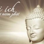 Lợi ích tụng Kinh niệm Phật